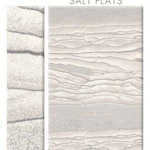 tyvarian salt flats color sample
